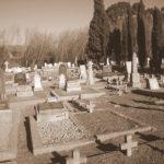oude_kerk_volks_museum_tulbagh_cemetery